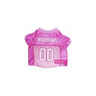 Ahi Michigan Wolverines Pink Jersey SM