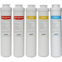 Watts Premier 560077 EZ RO4 Annual Replacement Filter, 5-pack