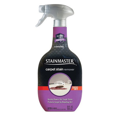 Stainmaster Carpet Care Stain Remover, 22 oz (2 pack)