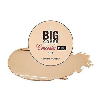 Etude House Big Cover Pot Concealer Pro (4g)