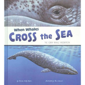 When Whales Cross the Sea : The Gray Whale Migration