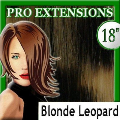 Pro Extensions 18