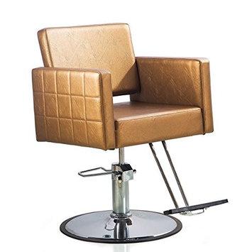 Shengyu Gold Hydraulic Styling Barber Chair Hair Spa Beauty Salon Cape Equipment