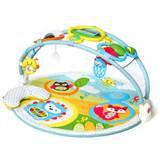 Infant Skip Hop 'Amazing Arch' Activity Gym
