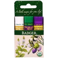 Badger Company, Lip Balm Gift Set, Green Box, 3 Pack, .15 oz (4.2 g) Each