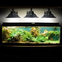 10W LED Aquarium Flood Light COOL White High Power Fish Tank Lighting Reef Plant Decor Salt Fresh H2O Main Lighting, Sub Lighting, Fresh Water Tanks, Salt Water