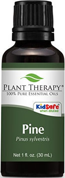 Plant Therapy Essential Oils Pine Oil 1 Ounce