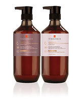 Theorie Marula Oil Transforming Shampoo and Conditioner Set (400mL/ea) - SAGE Hair Collection
