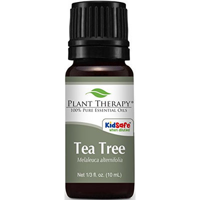 Plant Therapy Tea Tree (Melaleuca) Essential Oil. 100% Pure