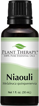 Plant Therapy Essential Oils Niaouli Oil 1 Ounce