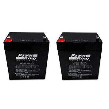 Razor E100 Electric Scooter battery 12V 5AH - 2 Pack - UPG, PowerSonic, BW. Toyo Brand (With Flashlight Bundle)
