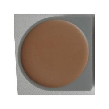 Mary Kay Buffed Ivory Day Radiance Cream Foundation # (834200)