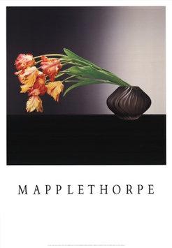 Mapplethorpe, Robert Robert Mapplethorpe-Parrot Tulips-1988 Poster