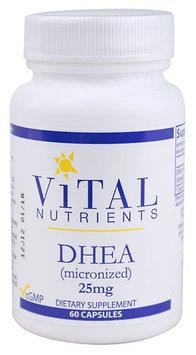 Vital Nutrient's Vital Nutrients - DHEA Micronized 25 mg. - 60 Capsules