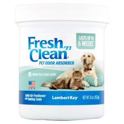 Pbi/gordon Corp Fresh N Clean Pet Odor Absorber Jar Green Tea