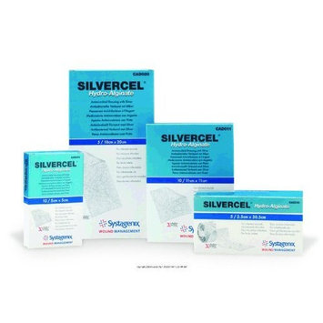 SILVERCEL Antimicrobial Alginate Dressing, Silvercel Drsng 2X2in, (1 CASE, 50 EACH)
