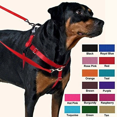 2 Hounds Design Freedom No-Pull Dog Harness and Leash, Adjustable Comfortable Control for Dog Walking, Made in USA (1