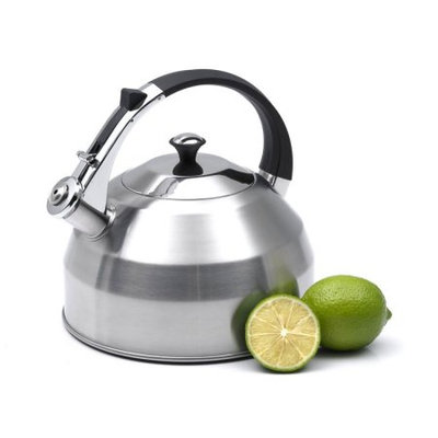 Creative Home Panorama 3.7-Quart Stainless Steel Tea Kettle