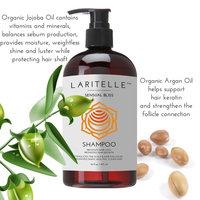 Laritelle Organic Shampoo 16 oz + Conditioner 16 oz | Prevents Hair Loss, Promotes Hair Growth | Argan Oil, Rosemary, Palmarosa & Orange | NO GMO, Sulfates, Gluten, Alcohol, Parabens, Phthalates