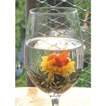Tea Beyond Blooming Teapot Gift Set Duo KJ GFS2001-1 [16 oz Premium Bloom 2 cts]