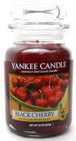 Yankee Candle Jar Candles 22 Oz.
