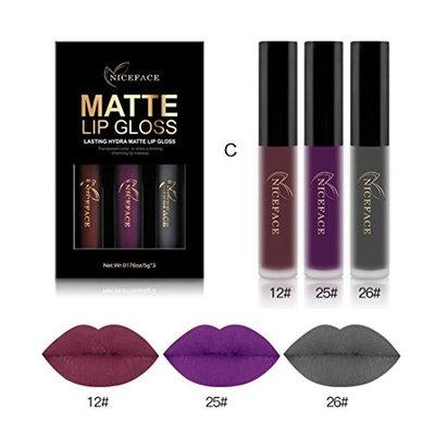Vinjeely New Fashion Waterproof Matte Liquid Lipstick Cosmetic Sexy Lip Gloss Kit (3PCS) (C)