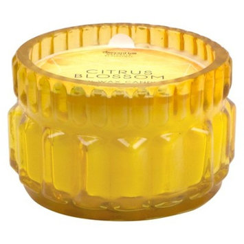 Glass Jar Candle Citrus Blossom 3.5oz - Vineyard Hill Naturals by Paddywax®