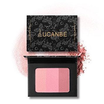 3 Colors Face Blusher Powder Contour Palette Cosmetic Makeup Kit