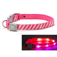 Dog-e-glow Light Up LED Dog Collar - Patented Light Up Durable Glowing Collar for Puppies and Dogs - by Dog e Glow (Pink Stripes, Large 15
