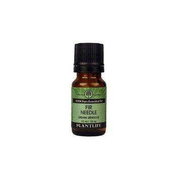 Fir Needle 100% Pure Essential Oil - 10 ml