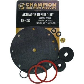 Champion ACTUATOR REBUILD KIT FOR 1 OR 3/4