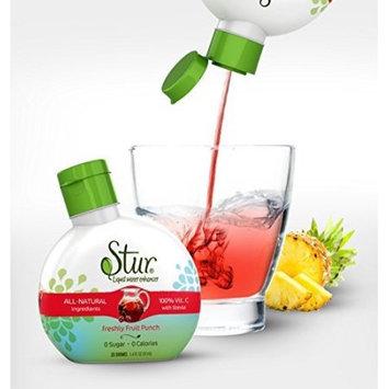 Dyla Stur - Fruit Punch - All-Natural Stevia Water Enhancer, 1.42 Fluid Ounce