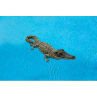 Poolmaster Small Floating Alligator, 18