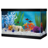 Grreat Choice® 2.5 Gallon Glass Aquarium and Canopy size: 2.5 gal