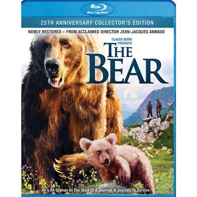 The Bear [Blu-ray], Movies