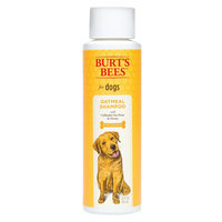 Burt's Bees Oatmeal Shampoo for Dogs, 16 fl oz