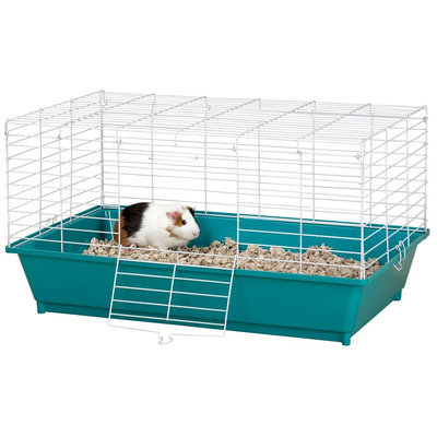 Grreat Choice® Pet Home, Green