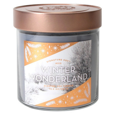Signature Soy Candle Winter Wonderland - 15.2 oz, Light Grey
