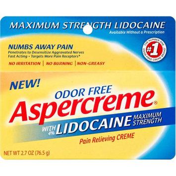 Aspercreme Pain Relieving Cr me