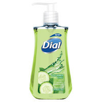Dial® Cucumber and Mint Hand Soap