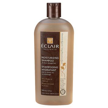 Eclair Naturals Shea Butter & Oatmeal Moisturizing Shampoo 12 oz
