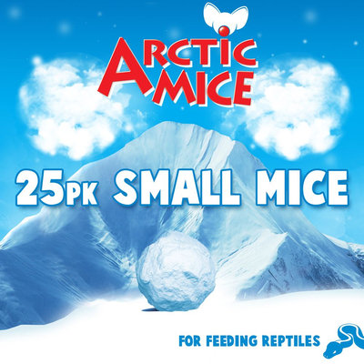 All Living Things Small Frozen Mice size: 25 Count