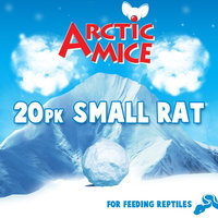 All Living Things Small Frozen Rats size: 20 Count