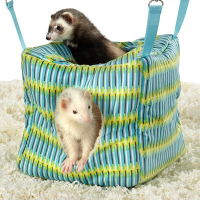 All Living Things® Ferret Cube, Coffee & Green