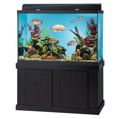 Top Fin® 150 Gallon Aquarium Ensemble