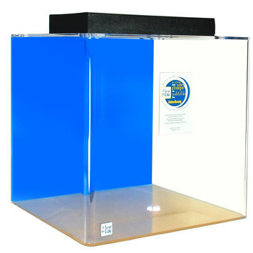 Clear-For-Life 25 Gallon Cube Aquarium size: 25 gal, Blue