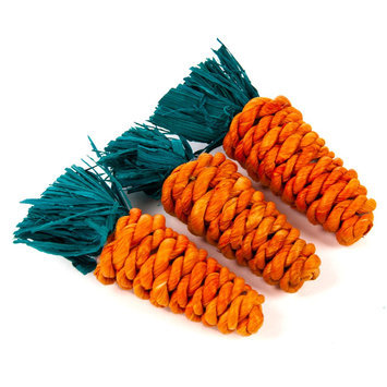 All Living Things® Carrot Shaped Small Pet Chew, Orange & Green