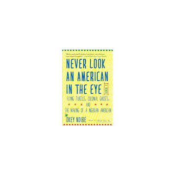 Never Look an American in the Eye: A Memoir of Flying Turtles, Colonial Ghosts, and the Making of a