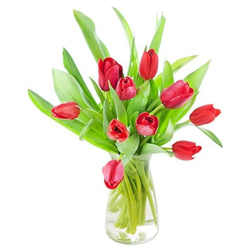 KaBloom: Fresh Flowers - Bouquet of 10 Red Tulips in a Glass Vase