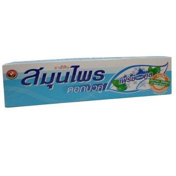 Twin Lotus Fresh & Cool Herbal Fluoride-free Toothpaste Wt 100g (3.53oz) X 2 Tubes